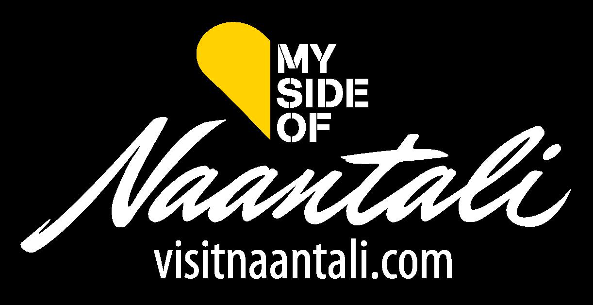 VISIT-naantali-logo-nega